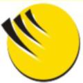 Treinamentos customizados e Consultoria em gerenciamento de projetos - Out Sourcing - Criação e operacionalização do PMO